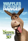 Shrek Forever After Posters
