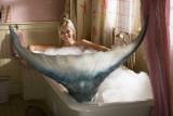 Aquamarine Obrazy