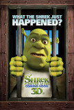 Shrek Forever After Print
