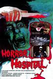 Horror Hospital Photo