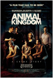 Animal Kingdom Photo