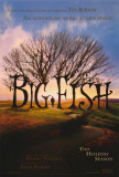 Big Fish Posters