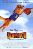 Air Bud: Golden Receiver Posters