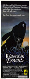 La Garenne de Watership Down Affiches