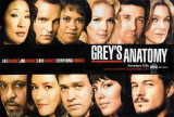 Grey&#39;s Anatomy Affiches