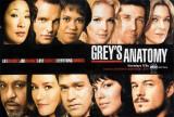 Grey's Anatomy Print