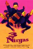 3 Ninjas Photo