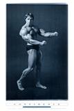 Eisen stemmen, Arnold Schwarzenegger, Englisch Kunstdruck