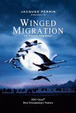 Winged Migration Posters