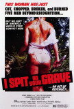 I Spit on Your Grave Photo