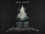 The Fly Photo