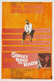 Sweet Bird of Youth Posters