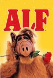 ALF Posters