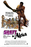 Shaft in Afrika Kunstdrucke
