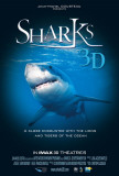 Sharks 3D Posters