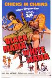 Black Mama, White Mama Prints