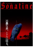 Sonatine - Japanese Style Affiches