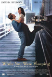 While You Were Sleeping Posters