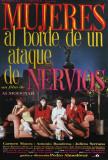 Femmes au bord de la crise de nerfs|Women on the Verge of a Nervous Breakdown Affiches