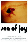 Sea of Joy Posters