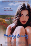 Stealing Beauty Posters