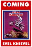 Viva Knievel Prints
