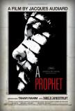 A Prophet Photo