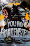 Young Frankenstein Prints
