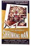 The Incredible Shrinking Man Kunstdruck
