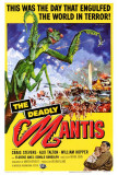 The Deadly Mantis Photo