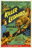 Killer Leopard Photo