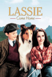 Lassie Come Home Posters