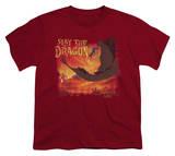 Youth: Dragon's Lair-Slay The Dragon T-Shirt