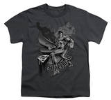 Youth: Superman-Fight And Flight T-Shirt