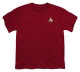 Youth: Star Trek-TNG Command Emblem Shirts