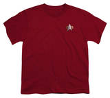 Youth: Star Trek-DS9 Command Emblem Shirts