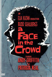 A Face in the Crowd Photo