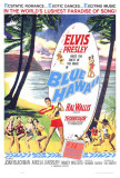 Blue Hawaii Prints