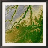 Bolivian Amazon Print by  Stocktrek Images