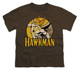 Youth: DC-Hawkman T-shirts