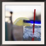 Lemonade II Posters by Nicole Katano