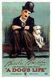 A Dog's Life Prints