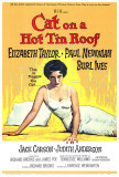 Cat On a Hot Tin Roof Prints