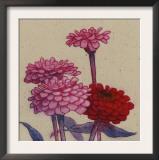 Zinnia Flower Prints