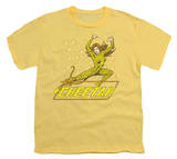 Youth: DC-The Cheetah T-Shirt
