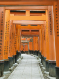 The ThoUSAnd Gates at Fushimi Inari Taisha, Kyoto, Japan Photographic Print by Rob Tilley