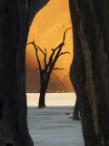 Dead Trees Silhouetted Against Sand Dune at Dead Vlei, Sossusvlei, Namibia, Africa Photographic Print by Wendy Kaveney