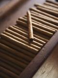 Cigars at La Leyenda Del Cigarro Cigar Factory, Santo Domingo, Dominican Republic Fotografisk tryk af Walter Bibikow