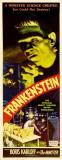 Frankenstein, Marry Shelly, anatomische weergave mannenfiguur Poster