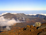 Haleakala Crater From Crater Rim and Silversword in Foreground Haleakala National Park, Maui, HI Photographic Print by Bernard Friel
